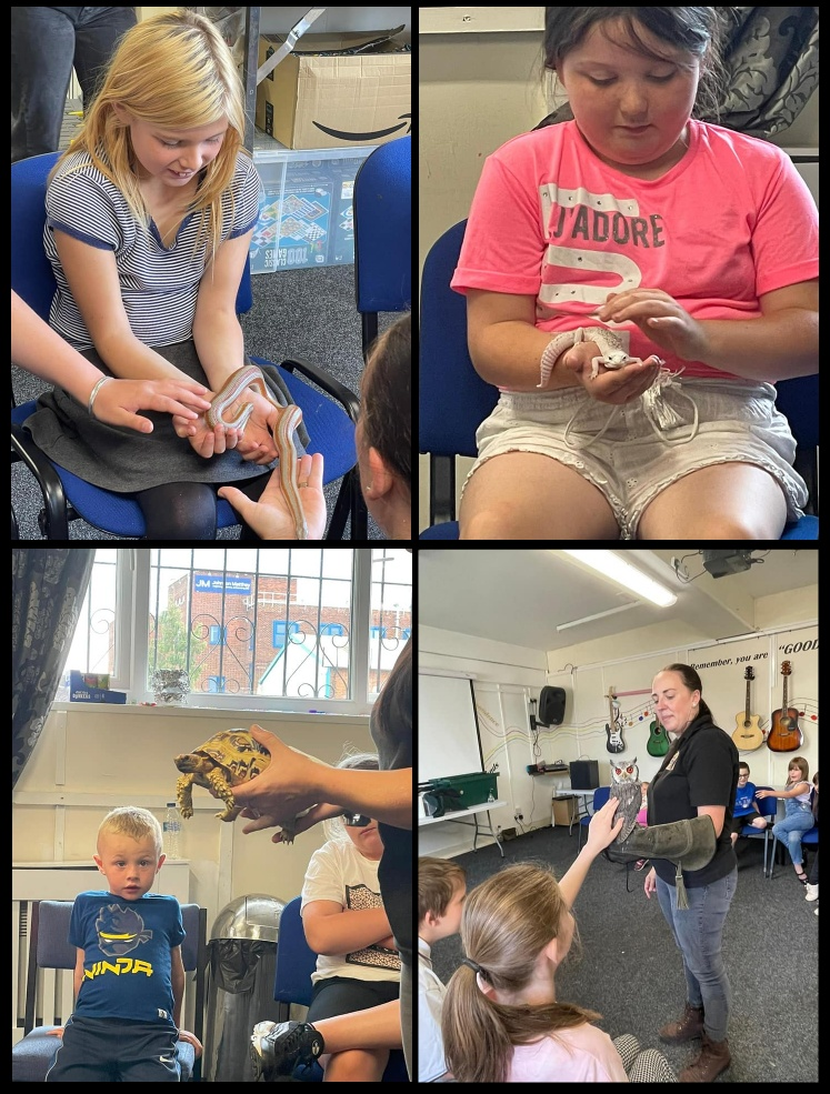 BCT Summer HAF: Animal Farm Visit